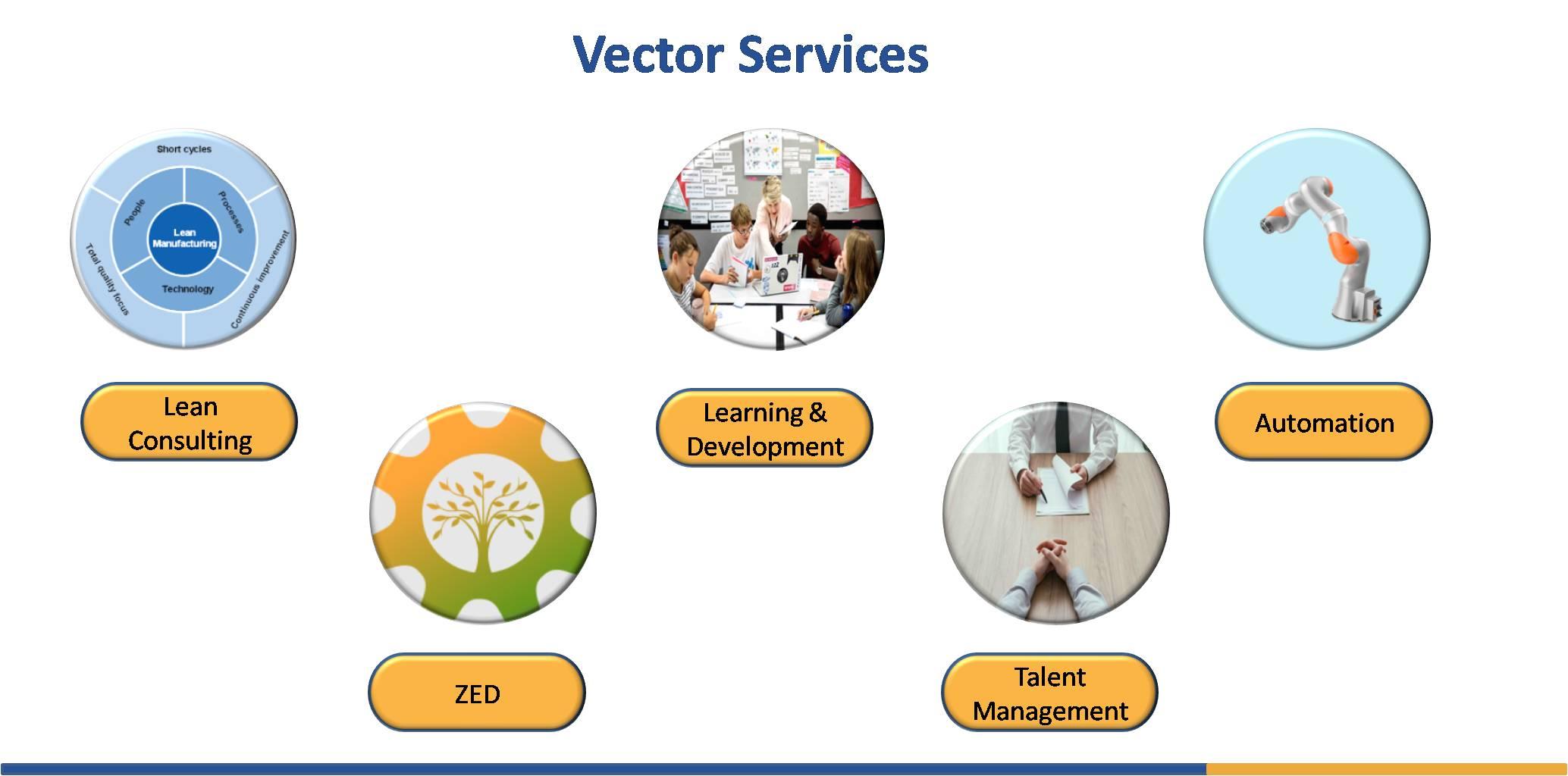Vector Consultancy Services